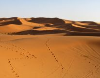 Spectacular views of high and astonishing Sand Dunes in Sahara Desert stock photography