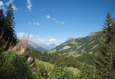 Spectacular views in the Kiental Valley (Berner Oberland, Switzerland). You can enjoy spectacular views in Kiental from Griesalp to Obere Bundalp. Kiental is a Royalty Free Stock Photo
