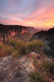 Spectacular views into Nellies Glen from Katoomba Stock Image