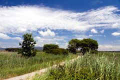 Spectacular views, Tuscany, Italy , a summer day stock photos