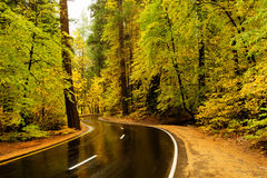 Spectacular views of the Yosemite National Park. In autumn, California, USA Royalty Free Stock Photo
