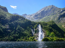 Spectacular waterfall in Milford Sound fiord. Stock Photography