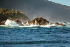 Spectacular Waves crashing on the seashore of Tasman Sea at Milf. Ord Sound fjord on a beautiful summer morning - Fiordland National Park, New Zealand, South Stock Image