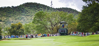 Spectators on the 8th Green. 8th green, surrounded by hordes of eager spectators Royalty Free Stock Photo