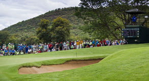 Spectators on the 8th Green. 8th green, surrounded by hordes of eager spectators Royalty Free Stock Photos