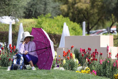 Spectators and gallery at the ANA inspiration golf tournament 2015 Stock Photography