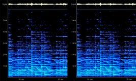 Spectrum Analyzer Display. Blue waveform computer spectrum analyzer display royalty free stock image