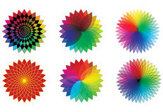 Spectrum flowers. Over white  illustration Royalty Free Stock Photos