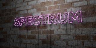 SPECTRUM - Gloeiend Neonteken op metselwerkmuur - 3D teruggegeven royalty vrije voorraadillustratie Royalty-vrije Stock Foto