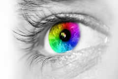 Spectrum multicolored Eye Macro Stock Photos