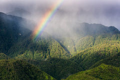 Spectrum of the rainbow in forest., Seasons colorful, Natural Royalty Free Stock Photos