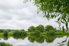 Specular reflection in the water of trees Royalty Free Stock Images