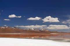 Spedizione del Sudamerica, Bolivia Immagini Stock Libere da Diritti