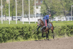 Speech by the athlete on a horse at the racetrack on the opening Royalty Free Stock Photo