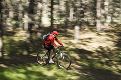 Speed. The young woman on a mountain bicycle Royalty Free Stock Images