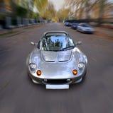 speed anden Arkivfoto