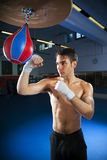 Speed bag Royalty Free Stock Image