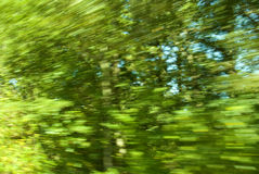 Speed Blur. Picture of trees taken from a fast moving vehicle causing a blur effect Stock Images