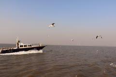 Speed boat in Arabian Sea. Way to Elephanta Islands from Gateway of India, Mumbai Stock Photography