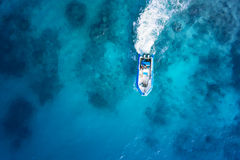 Speed boat on the azure sea Stock Photos