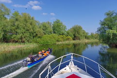 Speed ​​boat In The Natural Reserve Of The Danube Delta. Danube River - Landmark Attraction In Romania Royalty Free Stock Photo