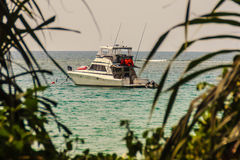 Speed boat moored at shore side, view from forest beach. Seascap Stock Photos