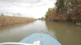 Speed boat stock video