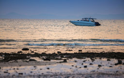 Speed boat  in the sea on sunset background Royalty Free Stock Images