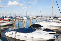 Speed Boats in Calm Harbor Marina Stock Photography