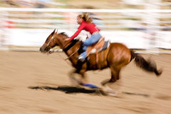 Speed Horse Royalty Free Stock Photography