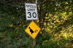 Speed limit. Traffic sign, speed limit, duck crossing royalty free stock photo