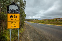 Wombat sign. Warning sign speed limit 65 km/h for wombat crossing from dusk to dawn, on Tasmania road Stock Images