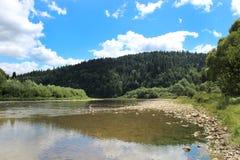 Speed mountainous river in Carpathian mountains Royalty Free Stock Image
