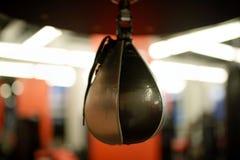 Speed punching bag in gym Stock Photos