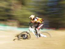 Speed racer. Mountain bike racer - pan blur effect Stock Photography