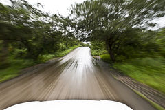Speed. Between Salalah forests in oman Royalty Free Stock Images