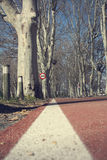 Speed signal cycle path in a winter park Stock Images