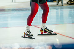 Speed skater sprinter ready Royalty Free Stock Image