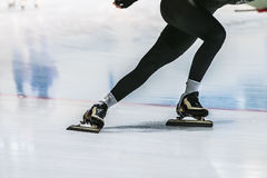 Speed skaters in training Stock Images