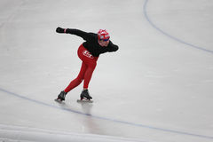 Speed skating Royalty Free Stock Photos
