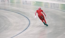 Speed skating Stock Image