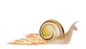 Speed snail on a white background Royalty Free Stock Photos