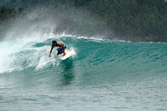 Speed surfer on tropical green wave Stock Image