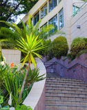 Speed up the building. Stairs along plants leads up Royalty Free Stock Images