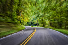 Speeding Through The Forest Royalty Free Stock Images