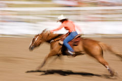Speeding Horse Stock Photos