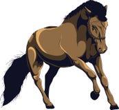 Speeding horse. Illustration of our quarter living here on the farm Stock Image