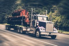 Speeding Logging Truck. With Heavy Wood Logs Load. Northern California Stock Photos