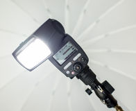 Speedlight with umbrella Royalty Free Stock Image