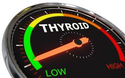 Measuring thyroid level. Speedometer Measuring thyroid level on low green , 3d rendered on white background royalty free illustration